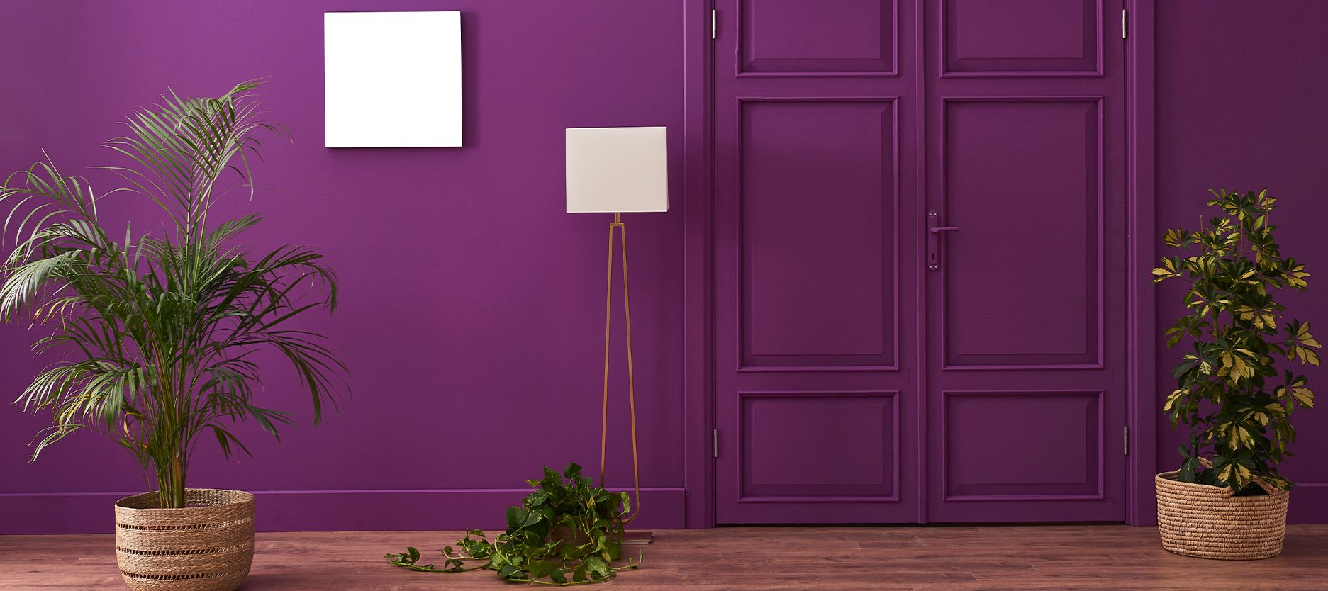 Playing Around with Purple Wall Colour in Your House