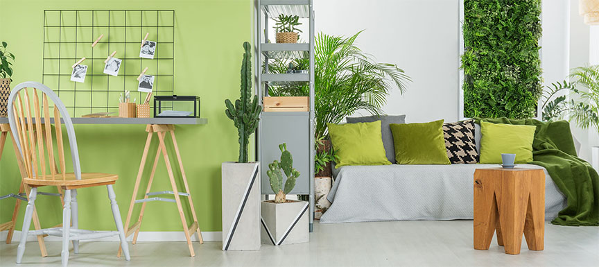 Green Wall Paint Colour